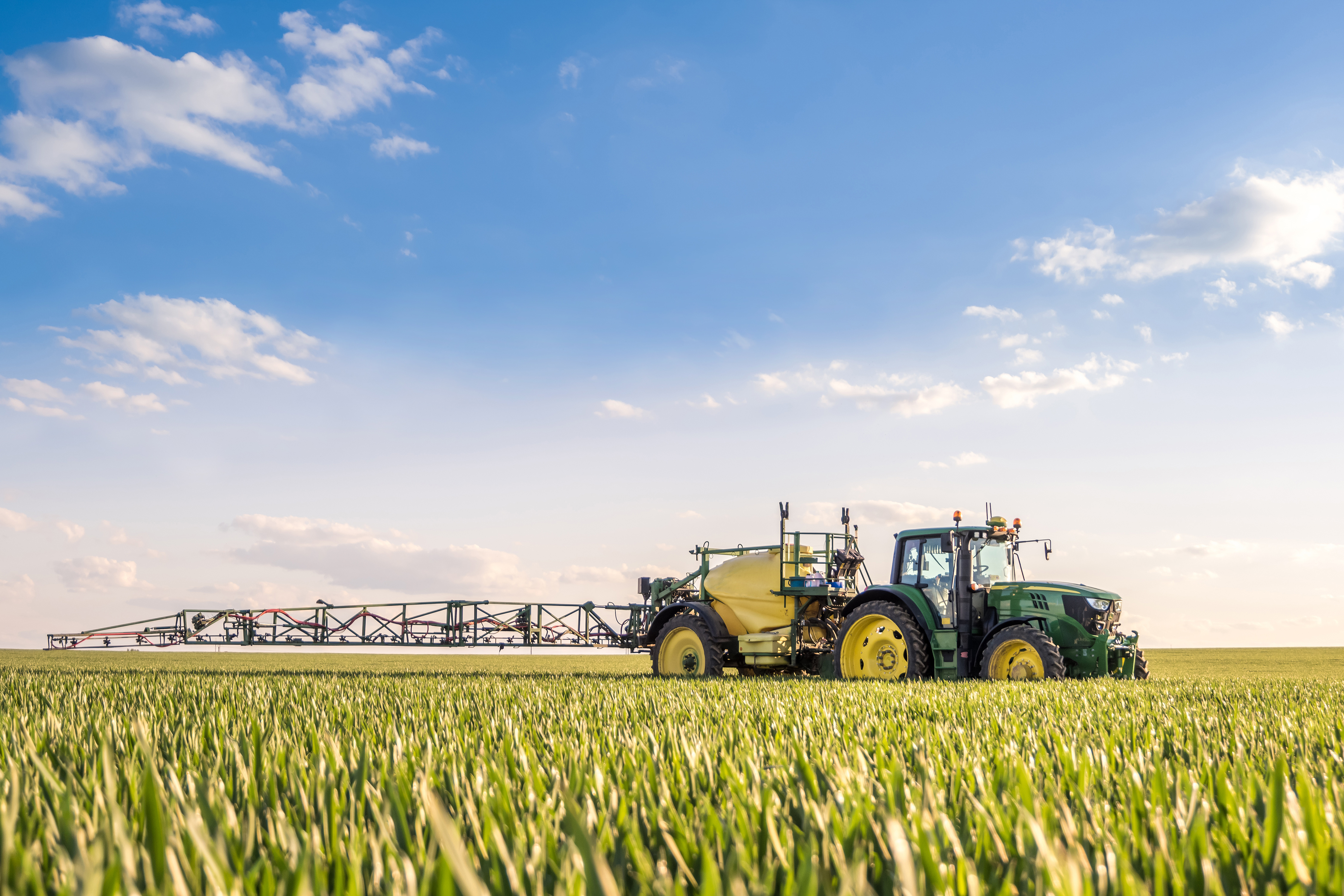 What you can learn from SwiftDetect rapid Septoria test
